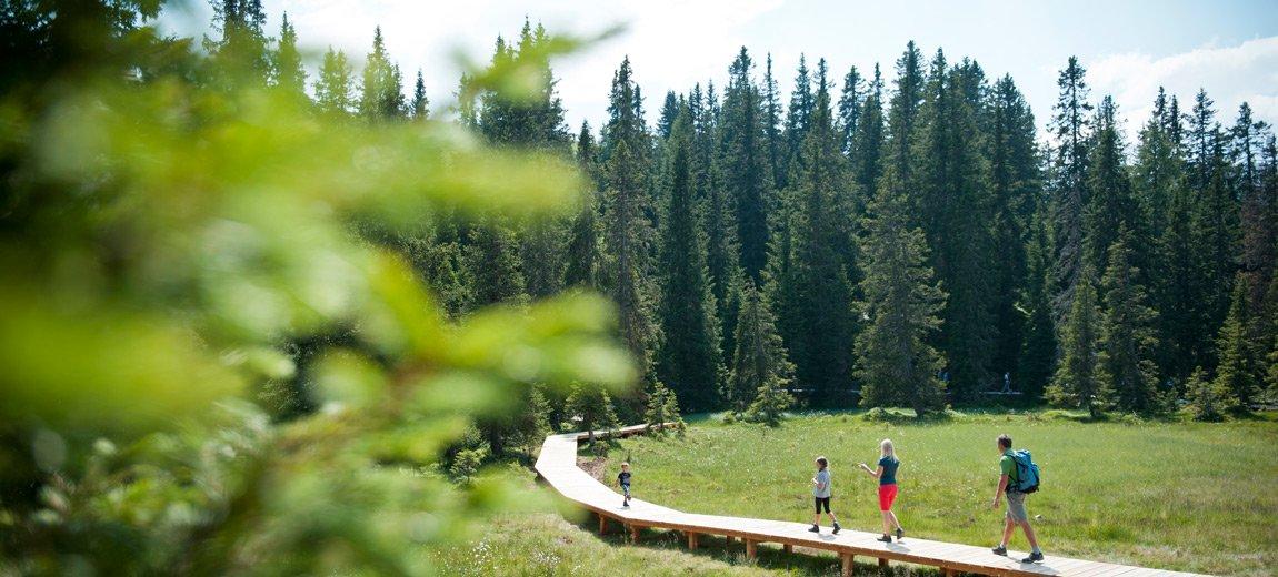 escursioni-vacanze-alto-adige